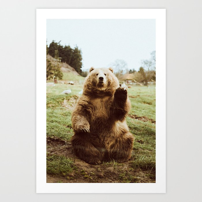 Hi Bear Art Print