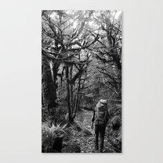 Trekking @ Routeburn Track Canvas Print