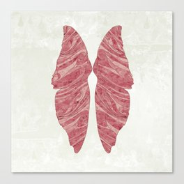 Abstract Butterfly Wings Design Canvas Print