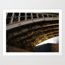 The Spider in Cahors Art Print