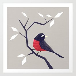 American Robin Art Print