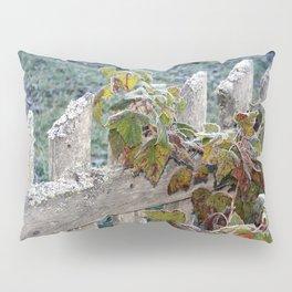 Climbing Over Pillow Sham