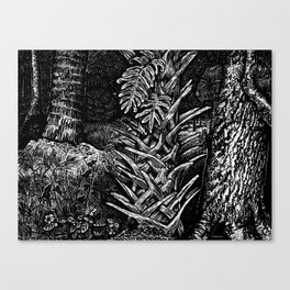 Cabbage Palm w/Fern & Oak Canvas Print