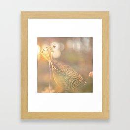 Spidey Framed Art Print