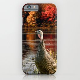 Hammond Pond iPhone Case