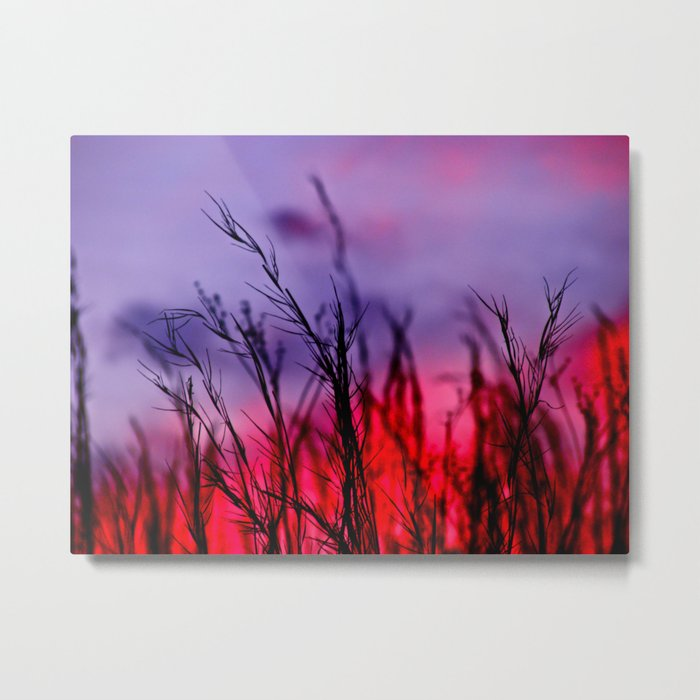 Colors to the West Metal Print