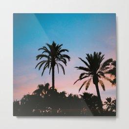 Palms in sunset Metal Print