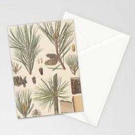 Botanical Pine Stationery Cards