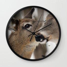 Chevreuil 004  Wall Clock