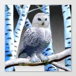 Blue-eyed Snow Owl Canvas Print