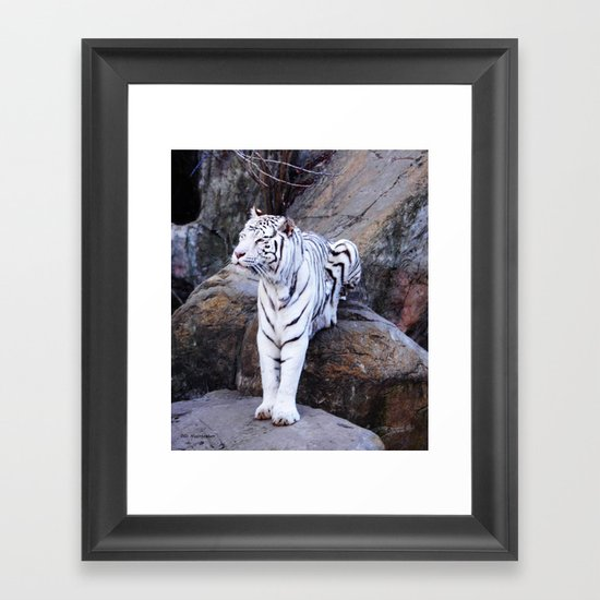 The Queen On Her Throne Framed Art Print