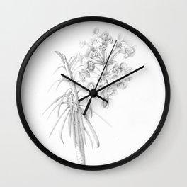 Euphorbia characias Wall Clock