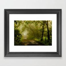 Misty Woodland Lane Framed Art Print