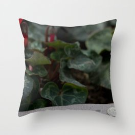 20 Cents Throw Pillow