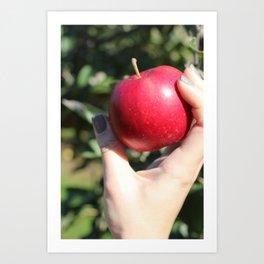 French Quarter Apple  Art Print