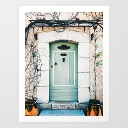 Turquoise door with climbing plant in France Art Print