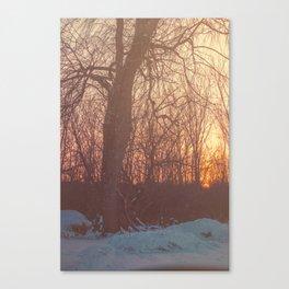 Tick & Fade Canvas Print