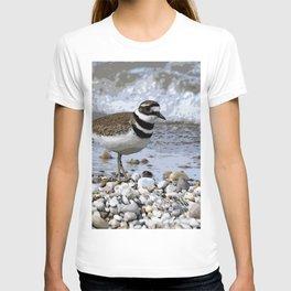 Shore Bird T-shirt