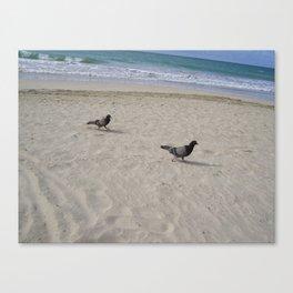 Bird bird Canvas Print