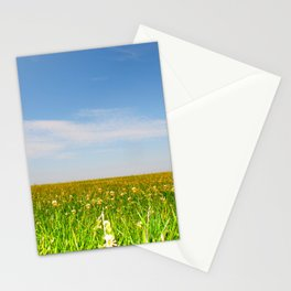 Chicago Lake Front  Stationery Cards