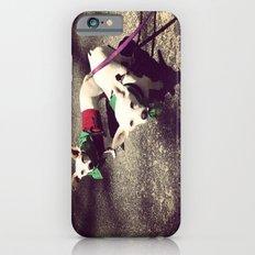Blanca Y Lobo iPhone 6s Slim Case