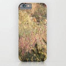 In The Field Slim Case iPhone 6s