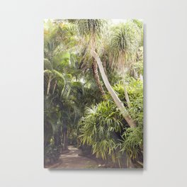 Florida Dreaming Metal Print