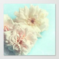 blush Canvas Prints featuring blush by Sylvia Cook Photography