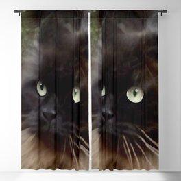 Mr. Batty Blackout Curtain