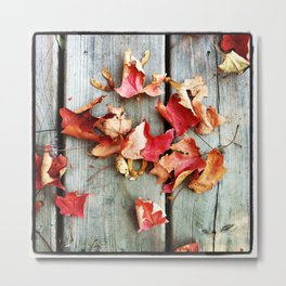Autumn's Touch Metal Print