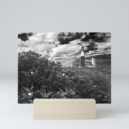 "Montauk Point Lighthouse ""The end"" Mini Art Print"