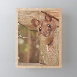 Mouse peeking Framed Mini Art Print