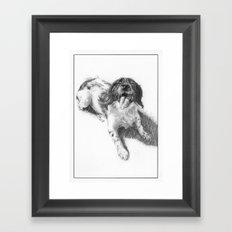 Pig the English Springer Spaniel Framed Art Print