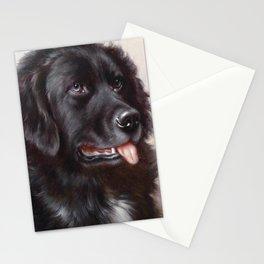 Newfoundland Dog Portrait Stationery Cards