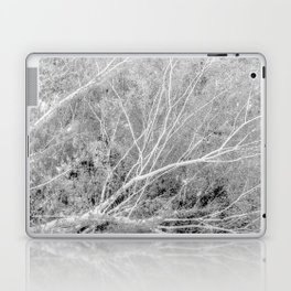 Incandescence bw inv Laptop & iPad Skin