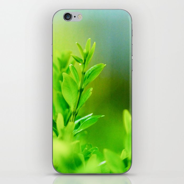 Green Harmony iPhone Skin