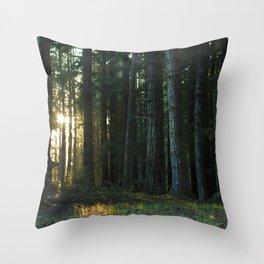 Golden Hour in the Woods Throw Pillow