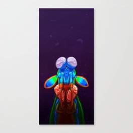 Intense Mantis Shrimp Canvas Print