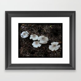Beautiful Mushrooms Framed Art Print