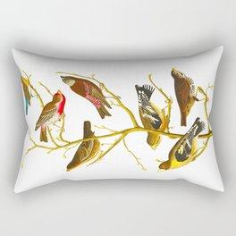 Lazuli Finch, Crimson-necked Bull-Finch, Gray-crowned Linnet, Cow-pen Bird, Evening Grosbeak, Brown Rectangular Pillow