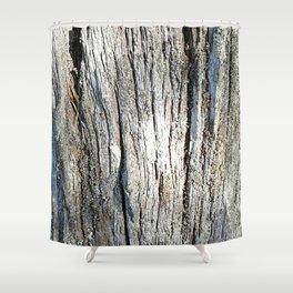 Old Stump Shower Curtain