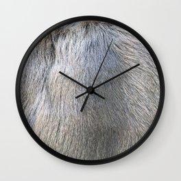 Rabbit Fur Wall Clock
