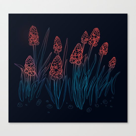Hyacinths in the night Canvas Print