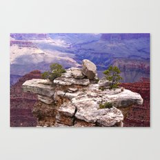Grand Canyon's little island Canvas Print