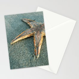 Star Fish Stationery Cards