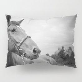 Horses of Instagram Pillow Sham