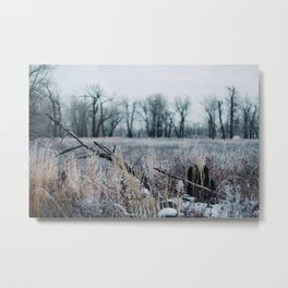 // a morning like any other    1 of 2 // Metal Print