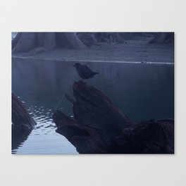 """""""Mysterious voyeur bird watches me photograph from my kayak in a dark setting.""""  Nature Series #1. Canvas Print"""