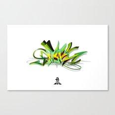 3d graffiti - NYC Canvas Print