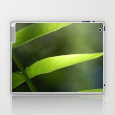 Light through the Leaves Laptop & iPad Skin